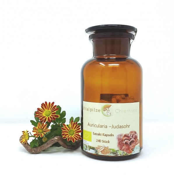 Bio Auricularia Extrakt Kapseln 240 im Vorratsglas