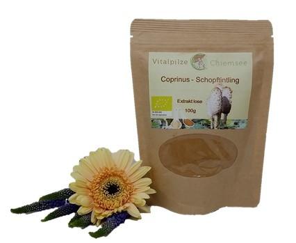 Bio Coprinus Extrakt Kapseln 100 Nachfüllpack