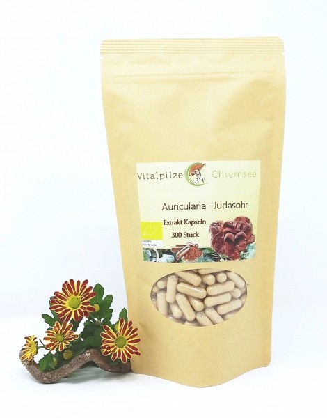Bio Auricularia Extrakt Kapseln 300 Nachfüllpack