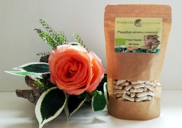 Bio Pleurotus Pulverkapseln 250 Nachfüllpack