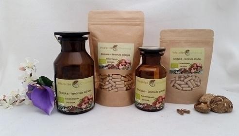 Bio Shiitake - Lentinula edodes Extrakt Kapseln